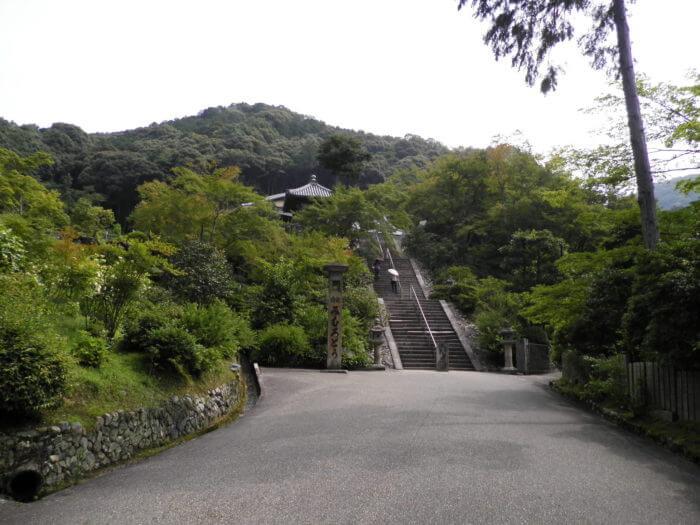 三室戸寺の長い階段