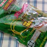 100均ダイソーの園芸用ネットは軽くて丈夫で支えが要る植物に便利です。