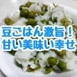 採れたての豆を使う究極の豆ごはんの作り方。めっちゃ美味い!甘い!幸せの味!