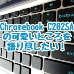 Chromebook C202SAの可愛さを語りたいと思います。猛烈に可愛いクロームブックです。