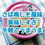 宝幸のさば梅じそ風味 缶詰はとても美味しくてお手軽で何もしたくない時の食事にぴったり!全力でおすすめ!