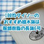 100均ダイソーでおすすめできる植木鉢は服部樹脂さんのゴミ箱みたいな長鉢6号です。