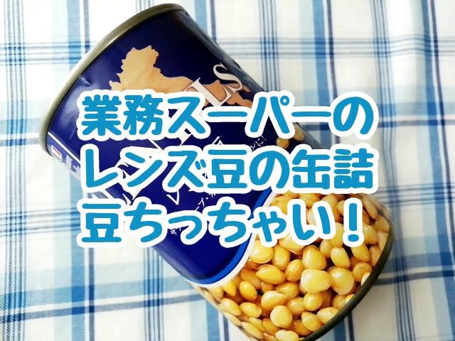 業務スーパーのレンズ豆の缶詰 想像していた以上に豆がちっちゃかった
