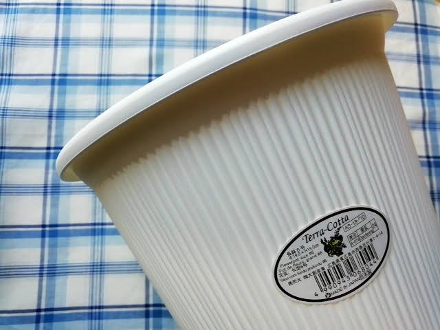100均ダイソーで買える服部樹脂の長鉢6号の白色