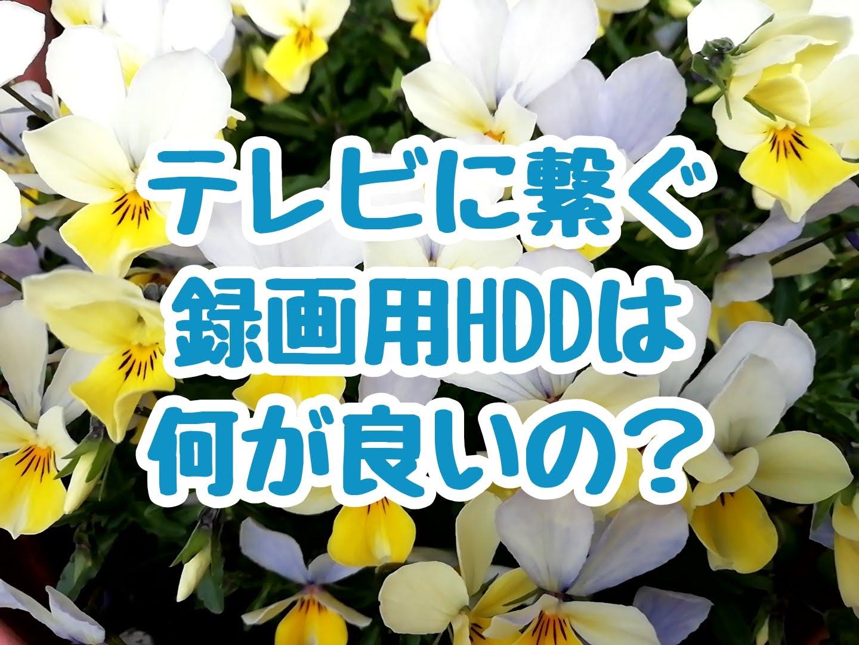 テレビに繋ぐ録画用HDDは何が良いの?