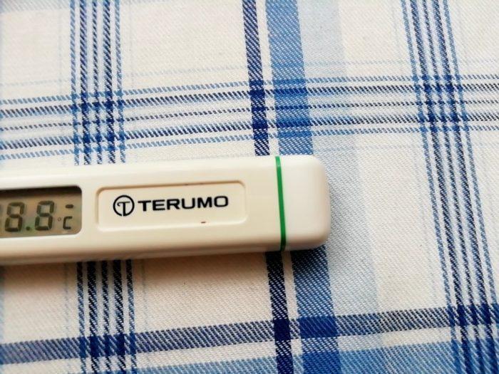 テルモの体温計C202をぶった切る位置