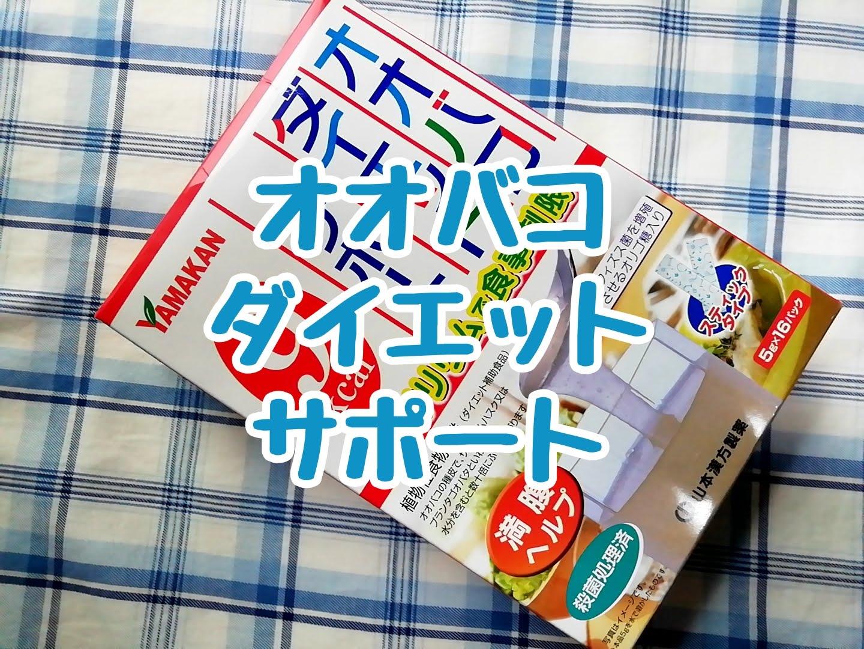 山本漢方のオオバコダイエットサポート
